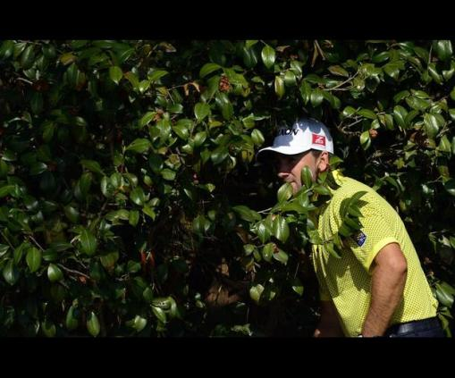 Graeme McDowell takes a peek in the bushes for his ball on the 10th hole Friday. Photo: Michael Madrid/USA Today Sports